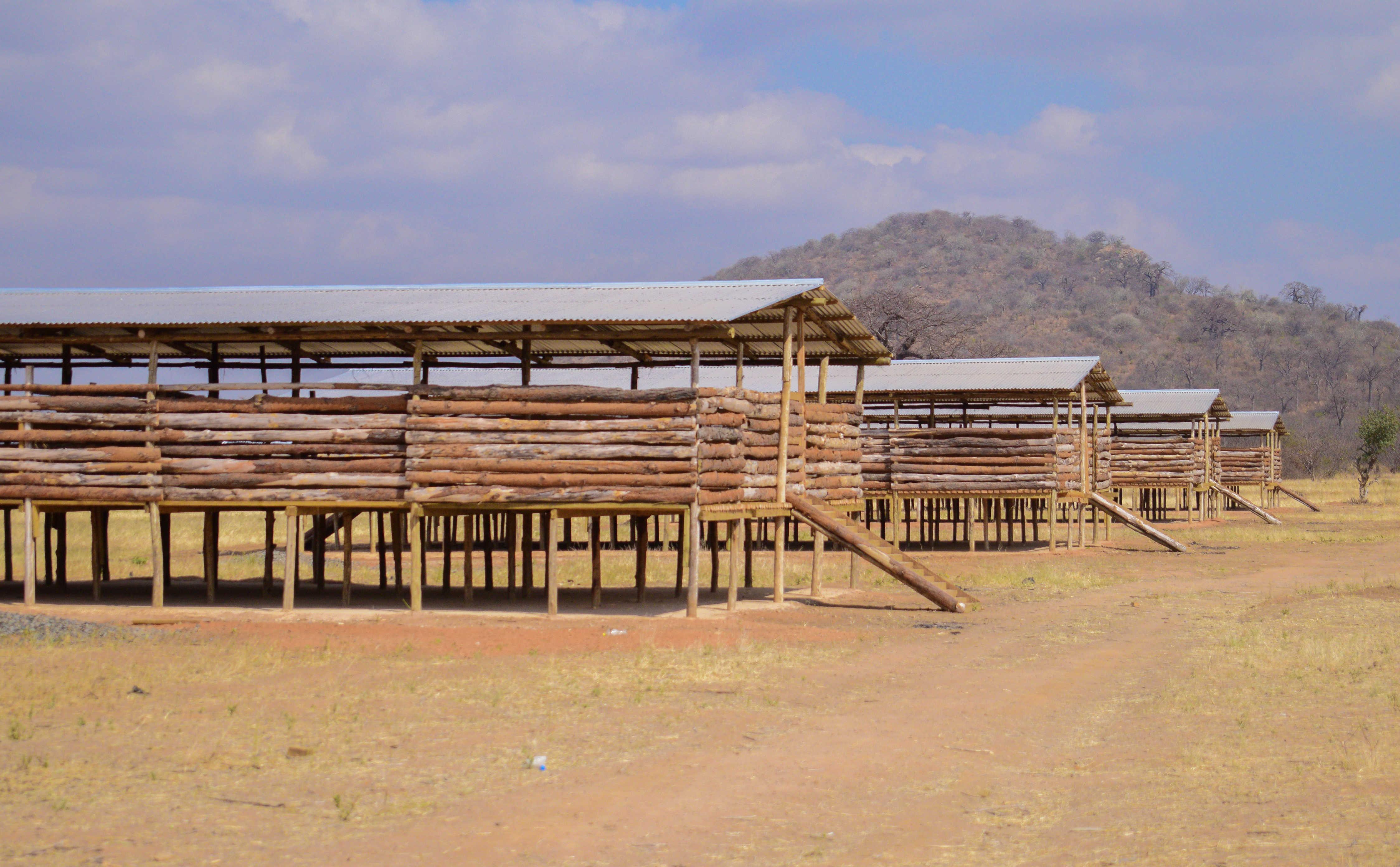 •Goat Sheds, Goat-Fattening Agribusiness Incubators, Kongwa